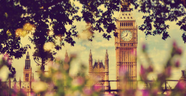 Big Ben, the Palace of Westminster in London, UK. View from a public garden with beautiful flowers and trees at sunny spring, summer day.
