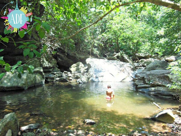 bagno-nella-giungla