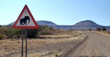 Trasferirsi in Africa - Amiche di Fuso