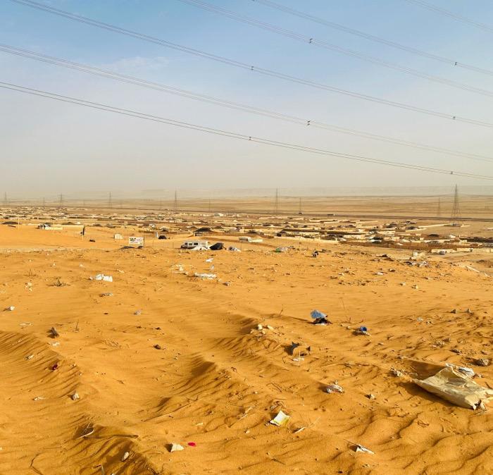 9 idee green per uno stile più sostenibile a Riyadh